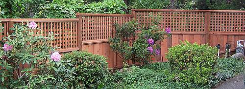 Wood Fencing Options Amp Maintenance Raftertales Home